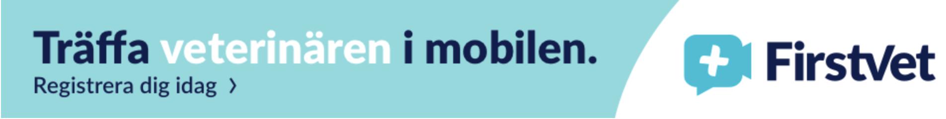 mobilveterinär
